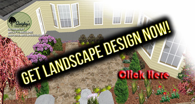 New Landcape-Design-Now